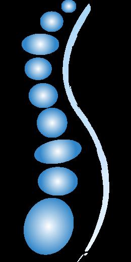 spine-2129816